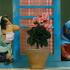 سریال عروسکی سرحال از شنبه ۲۵ فروردین ماه شنبه تا چهارشنبه ساعت ۲۰